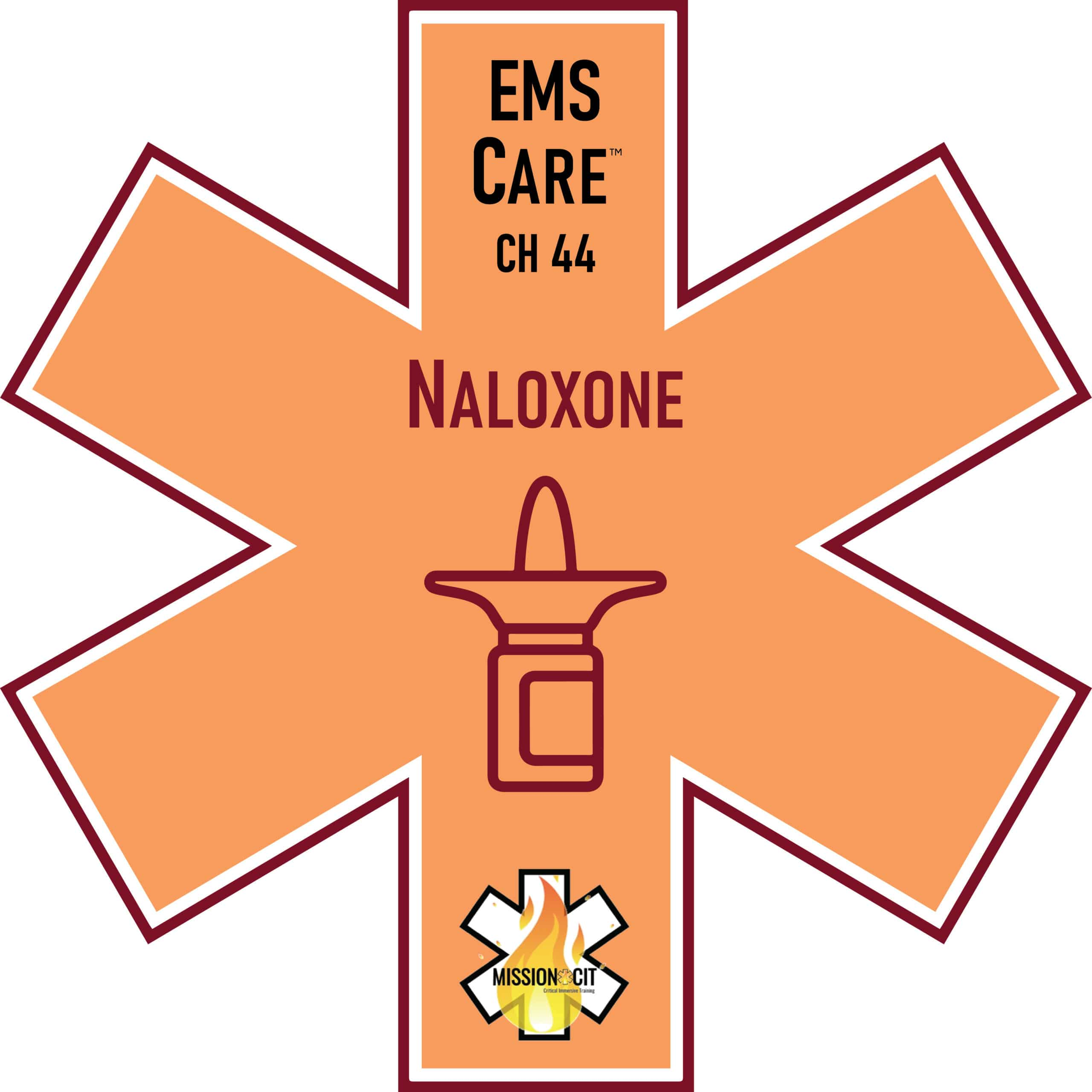 EMS Care Chapter 44 | Naloxone - Narcan