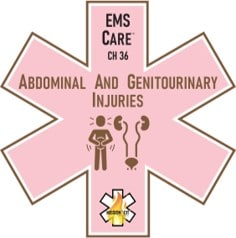 missioncit-ems-care-abdominal-and-genitourinary-injuries